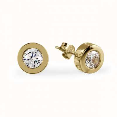 Radley Jewellery CZ Set Gold Stud Plated Silver Stud Earrings RYJ1032