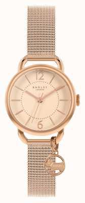 Radley | Women's Rose Gold Mesh Bracelet | Rose Gold Dial | RY4528
