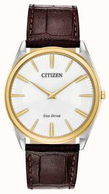 Citizen Stiletto | Men's Eco Drive | Brown Leather Strap | White Dial AR3074-03A